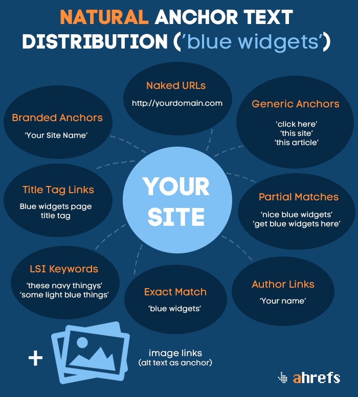 anchor-text-distribution-infographic